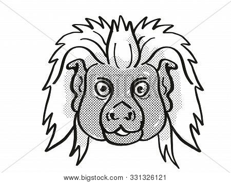 Retro Cartoon Mono Line Style Drawing Of Head Of A Cottontop Tamarin, A Small Monkey Species Found I