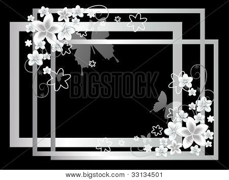 white frames with flowers