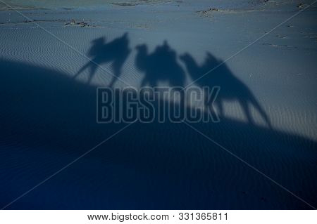 Camel Shadow On Moonlight