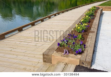 Garden Bed by water