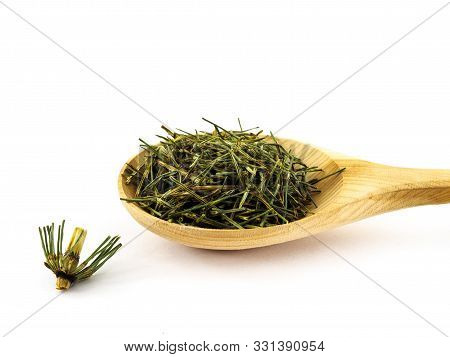 Dry Twigs Of Horsetail Lie In A Wooden Spoon On A White Background.