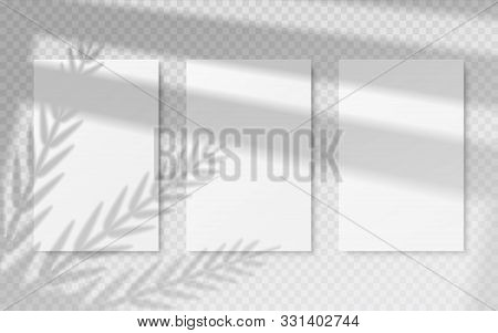 Posters With Shadow Overlay. White Blank Banners Mockup With Vector Image Transparent Shadow Of Trop