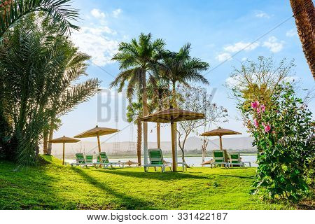 Chaise-longues And Umbrellas On Green Meadow Near River Nile In Luxor, Egypt