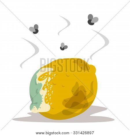 Yellow Fruit Lemon Become Rotten And Bad. Citrus Organic Food