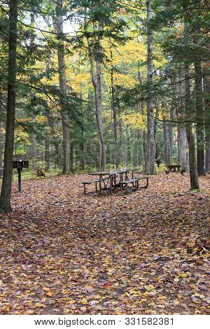 Woodsy Scene With Dead Leaves All On The Ground, Picnic Tables Ready For Autumn Hikers To Sit And En