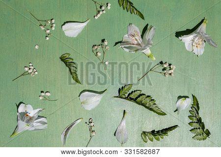 White Alstroemeria On The Green Wooden Background.