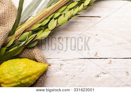 Composition Of Sukkot Symbols: Palm, Willow, Myrtle, Etrog. Lulav On Jute Fabric And Wood Background