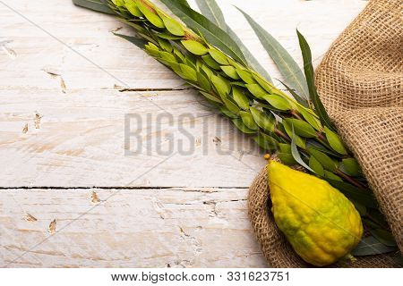 Lulav On Jute Fabric And Wood Background With A Copy Space. Composition Of Sukkot Symbols: Palm, Wil