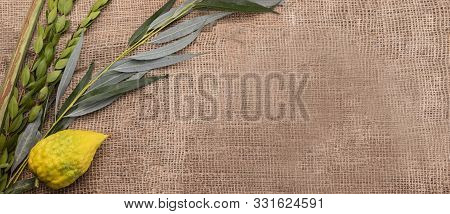 Top View On Sukkot Festival Symbols: Palm, Willow, Myrtle, Etrog. Lulav On Jute Fabric. Banner With