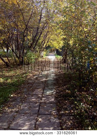 The Path In The Park, Covered With Fallen Autumn Leaves.