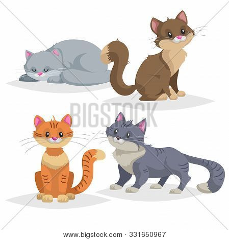Cute Cartoon Cats Different Breeds. Domestic Animals Set. Ginger, Blue, Brown Cats In Comic Style. V