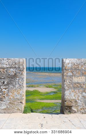 Northern coast ebb ty Ile de Re behind wall