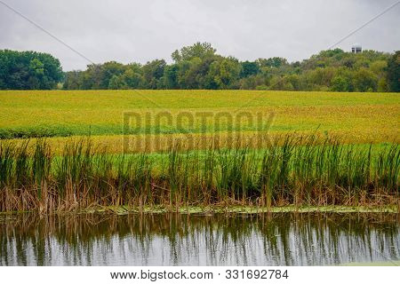Scenic Pond And Colorful Farm Landscape In The Midwest