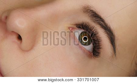 Woman Eye With Beauty Lashes. Eyelash Extension Procedure. Beautiful Eye With Long Eyelashes. Lashes