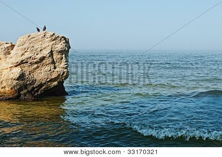Rock In The Sea And Two Pigeons