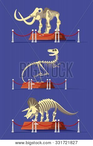 Extinct Animals Bones Vector Illustrations Set. Prehistoric Wildlife. Mammoth, Tyrannosaurus Rex And
