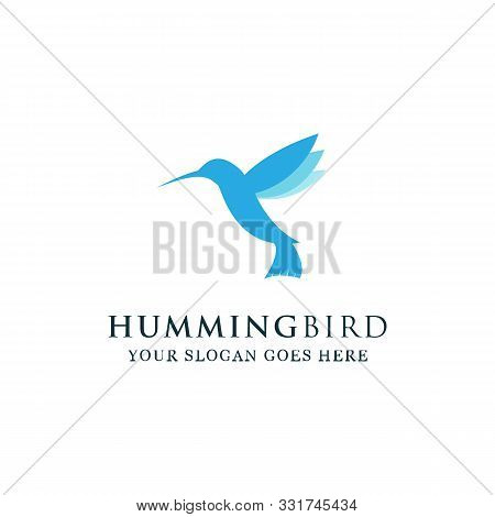 Humming Birds Logo Designs, Hummingbirds Logo Inspirations