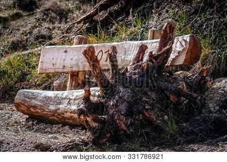 A Very Special Wooden Bench Made From A Tree Trunk With The Roots Still Attatched On One Side And Ca