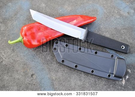 Knife Stainless Steel Blade Fresh Organic Natural Product Longevity Red Pepper Gourmet Diet Gray Bac