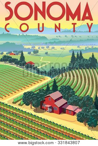 Romantic Rural Landscape In Sunny Day In Sonoma County, Usa, With Vineyards, Farms, Meadows, Fields