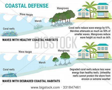 Coastal Defenses To Sea Level Rising -mangroves, Marshes, Coral Reefs, Dikes