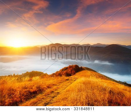 Tranquil morning moment in alpine valley. Location place of Carpathian mountains, Ukraine, Europe. Image of wonderful scenery, nature wallpapers. Fantastic sunset scene. Discover the beauty of earth.