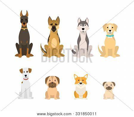 Cartoon Color Dog Breeds Icon Set Include Of Doberman, Husky And Corgi. Vector Illustration Of Icons