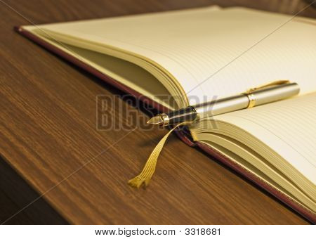 Diary Pen