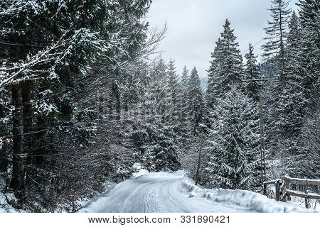 Wintery Snowcovered Mountain Road With White Snowy Spruces. Travel Background. Transportation