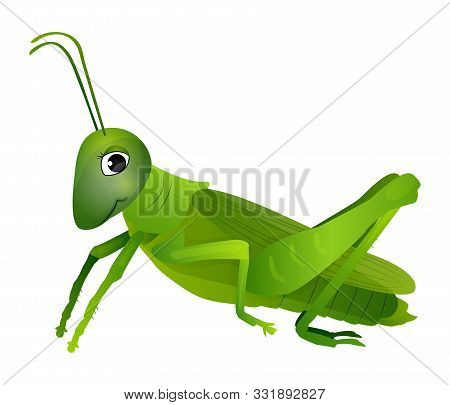 Cute Cartoon Grasshopper Isolated On A White Background. Vector Illustration.