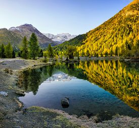 Autumn Landscape With Reflection In A Lake In The Alpine Mountainsю Autumn Scenery Of Colorful Trees