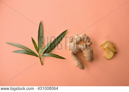 Composition With Ginger Root Leaves And Sliced Portions On Orange Background. Top View