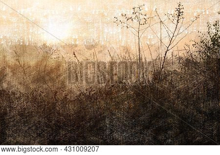 Autumn Dawn Over A Field Of Dry Grasses. Wild Grasses With Dewdrops. Foggy Autumn Morning. Digital W