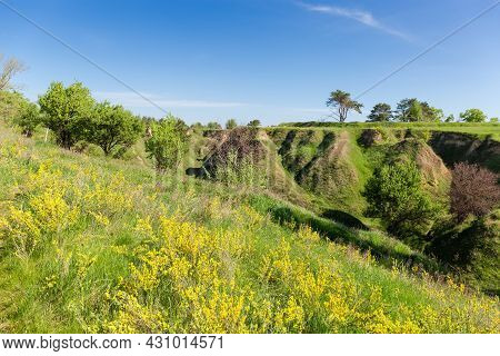 Deep Branched Ravine With Steep Precipitous Clay Slopes Overgrown With Grass And Single Trees Agains