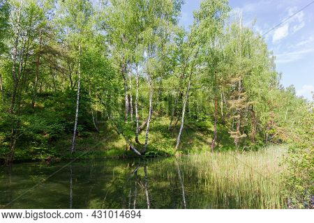 Small Shallow Lake Partly Overgrown With Reeds, With Forested Hilly Bank In Early Summer