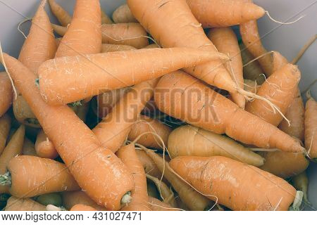 Fresh And Organic Carrot,close-up Orange Carrot,