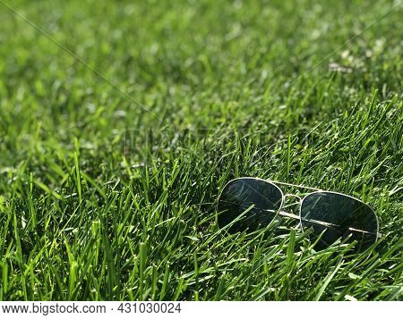 Glasses With A Mirror Blue Coating On The Glasse. Sunglasses With Black Glasses On The Luscious Gree