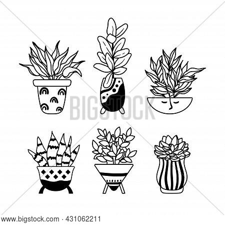 Succulent, Ficus Home Plants, Potted Boho Houseplants Isolated Clipart Bundle, Black And White Flora