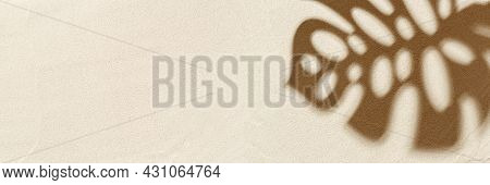 Summer Minimal Banner With Shadow Of Monstera Palm Tree Leaf On Natural Sand Background. Pastel Colo