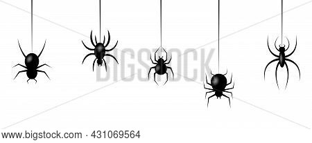 Halloween Spiders Hanging On Web. Use For Printing, Posters, T-shirts, Textile Drawing, Print Patter