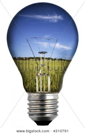 Light Bulb With Landscape Inside - Environmental Concept
