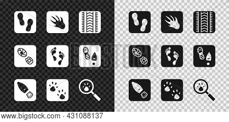 Set Human Footprints Shoes, Alligator Crocodile, Tire Track, Paw, Search, And Icon. Vector