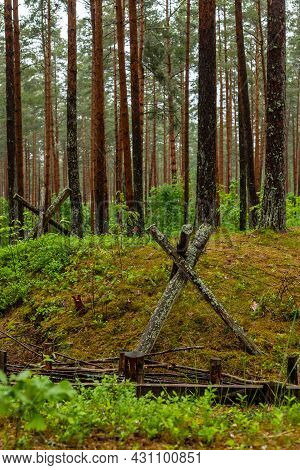 Vertical Photo Of Trenches In Forest In The Christmas Battles Place At Latvia, Europe. Replica Of Ww