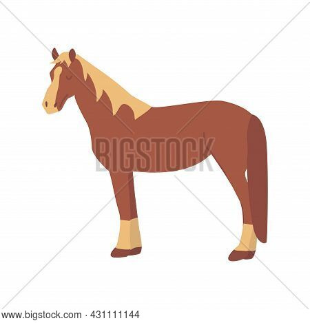 Brown Horse. Elegant Herbivore. Colorful Vector Isolated Illustration Hand Drawn. Farm Animal, Lives