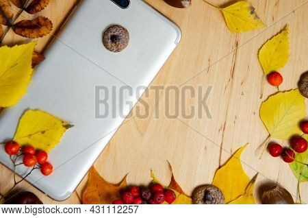 Selective Focus Smartphone, Yellow, Red, Green, Brown Autumn Leaves, Chestnuts, Rowan, Acorns On Woo