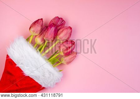Santa Claus Christmas Hat With Tulips Inside. New Year, Christmas, Gifts
