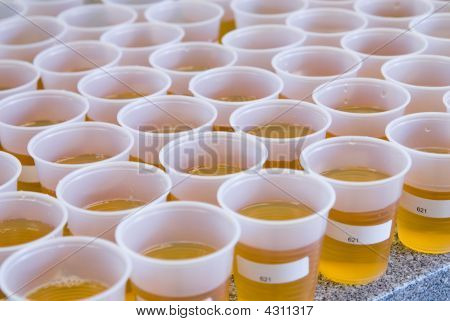 Large Group Of Plastic Cups With Amber Liquid Inside