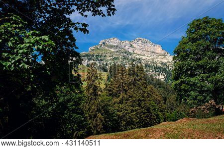 Nice Low Angle View On The Peak Of The Tour De Mayen Mountain, Framed By Some Trees On A Sunny Day I