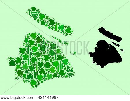 Vector Map Of Shanghai Municipality. Collage Of Green Grape Leaves, Wine Bottles. Map Of Shanghai Mu