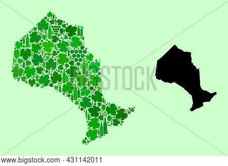 Vector Map Of Ontario Province. Mosaic Of Green Grapes, Wine Bottles. Map Of Ontario Province Mosaic